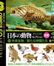 カプセルQミュージアム 日本の動物コレクション9別巻 外来生物/新たな仲間たち 全6種/ 1回300円