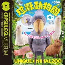 珍獣動物園