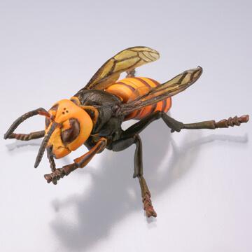 オオススメバチ