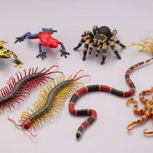 有毒危険動物 全8種