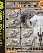 ホネコレ!十二支動物頭骨根付 下巻【午~亥編】 全6+1種/1回300円