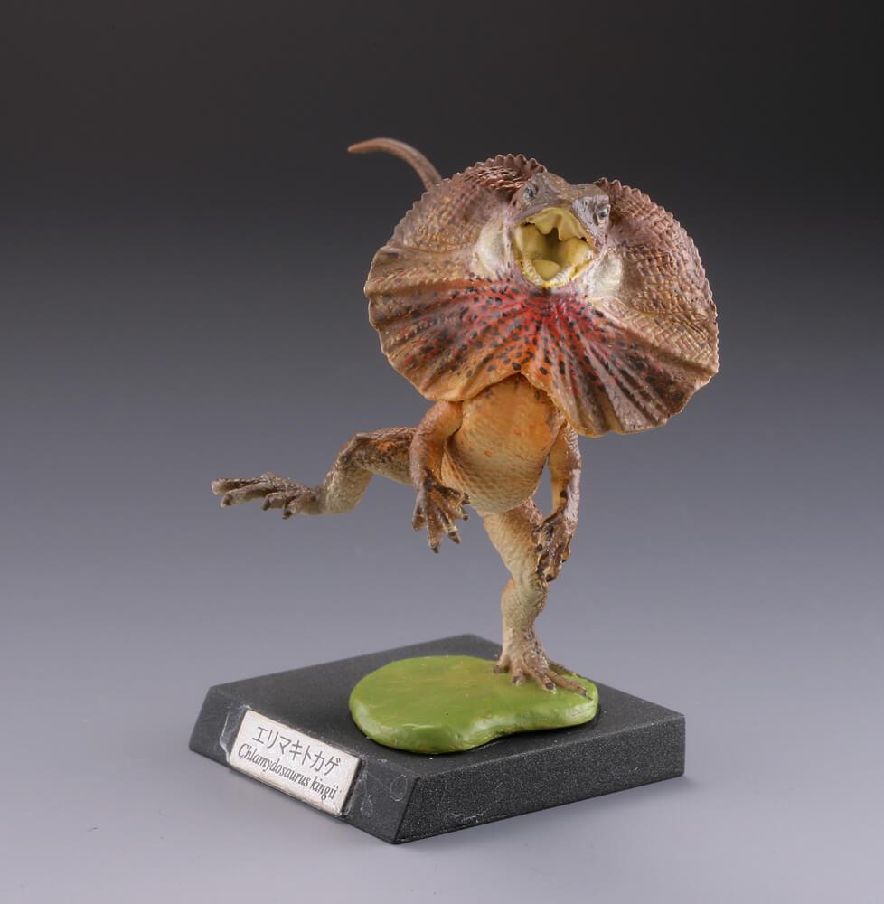 エリマキトカゲの画像 p1_17