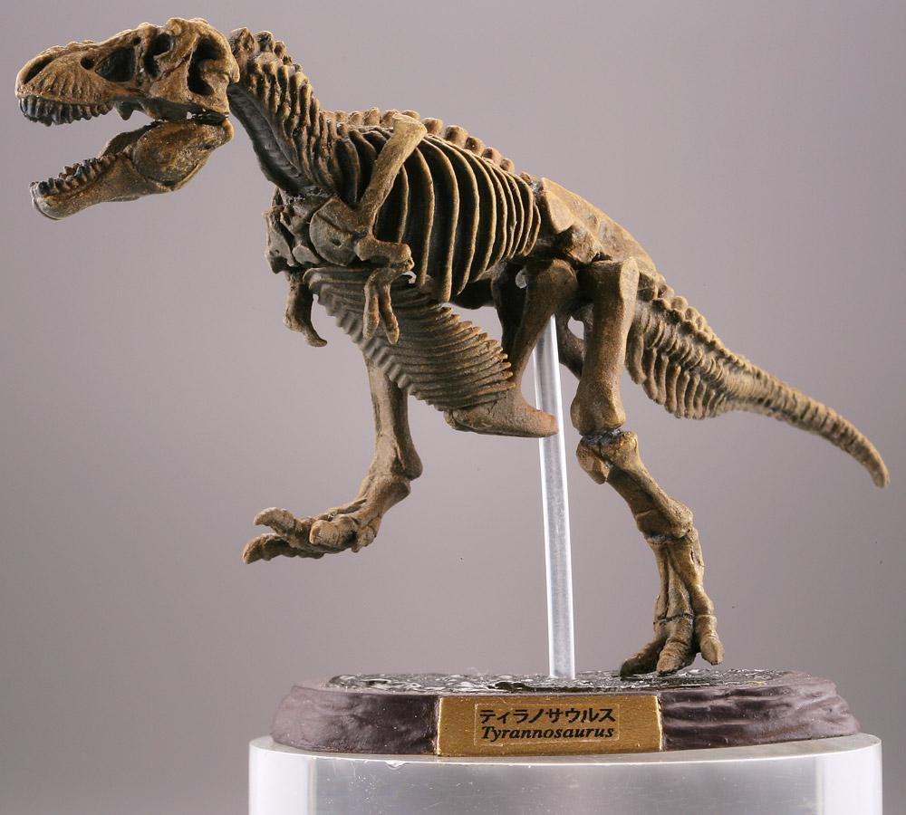 ティラノサウルスの画像 p1_32