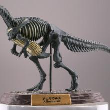 アロサウルス/化石カラー