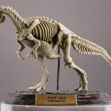 アロサウルス/ナチュラルカラー