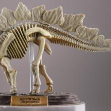 ステゴサウルス/ナチュラルカラー