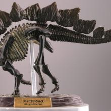ステゴサウルス/化石カラー