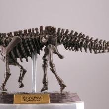 ディプロドクス/化石カラー