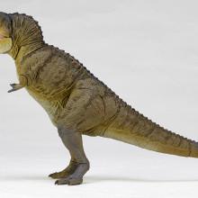 t-rex2-02