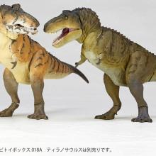 t-rex2-12