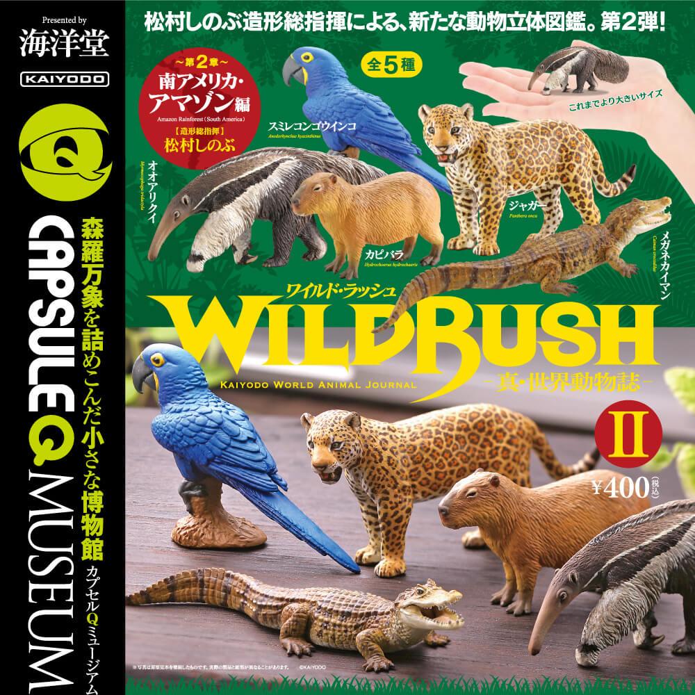 WILD RUSH 真・世界動物誌Ⅱ~南アメリカ・アマゾン編~