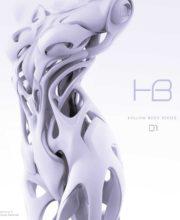 デジタルガレージキット Android HB 01