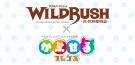 WILDRUSH(ワイルド・ラッシュ)x かぷせるフレンズ 第3弾