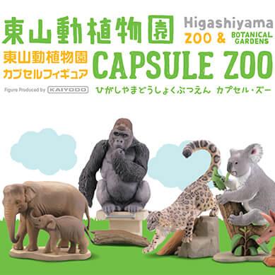 capsule_zoo